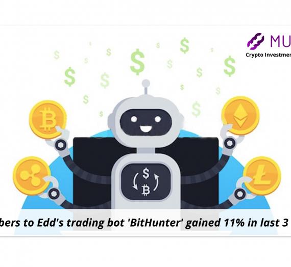 Meet the traders of Mudrex: Edd, creator of trading bot 'BitHunter'