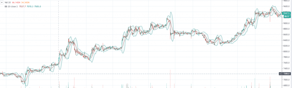 BTC rallied all of the month