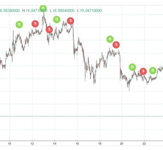 Marketplace Update Feb 2020: Choppy markets give choppy returns