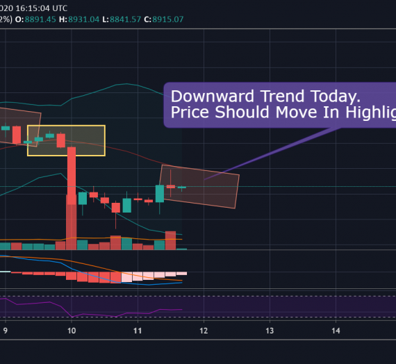 Mudrex Price Analysis #72 Bitcoin (BTC/USD) – 11th May 2020