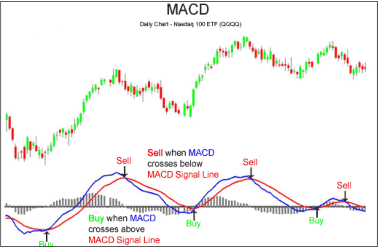 Signal Line Crossover Trading Strategy