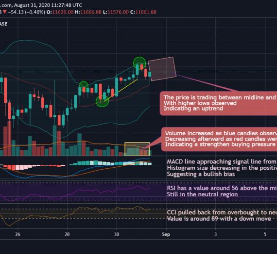 Mudrex 4Hr Price Analysis #174 Bitcoin (BTC/USD) – 31st August 2020