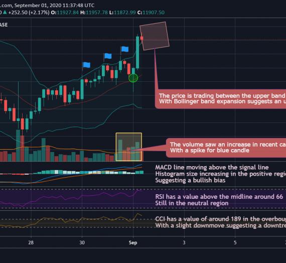 Mudrex 4Hr Price Analysis #176 Bitcoin (BTC/USD) – 1st September 2020
