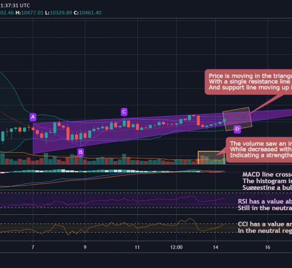 Mudrex 4Hr Price Analysis #192 Bitcoin (BTC/USD) – 14th September 2020