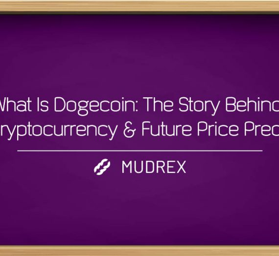 What Is Dogecoin: The Story Behind The Cryptocurrency & Future Price Prediction