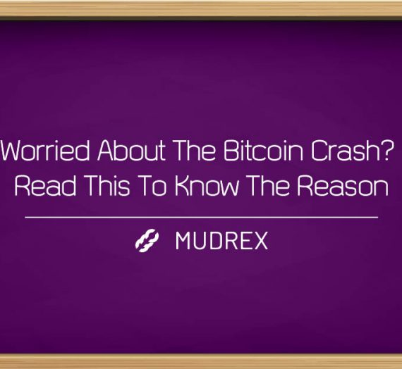 Worried About The Bitcoin Crash? Read This To Know The Reason
